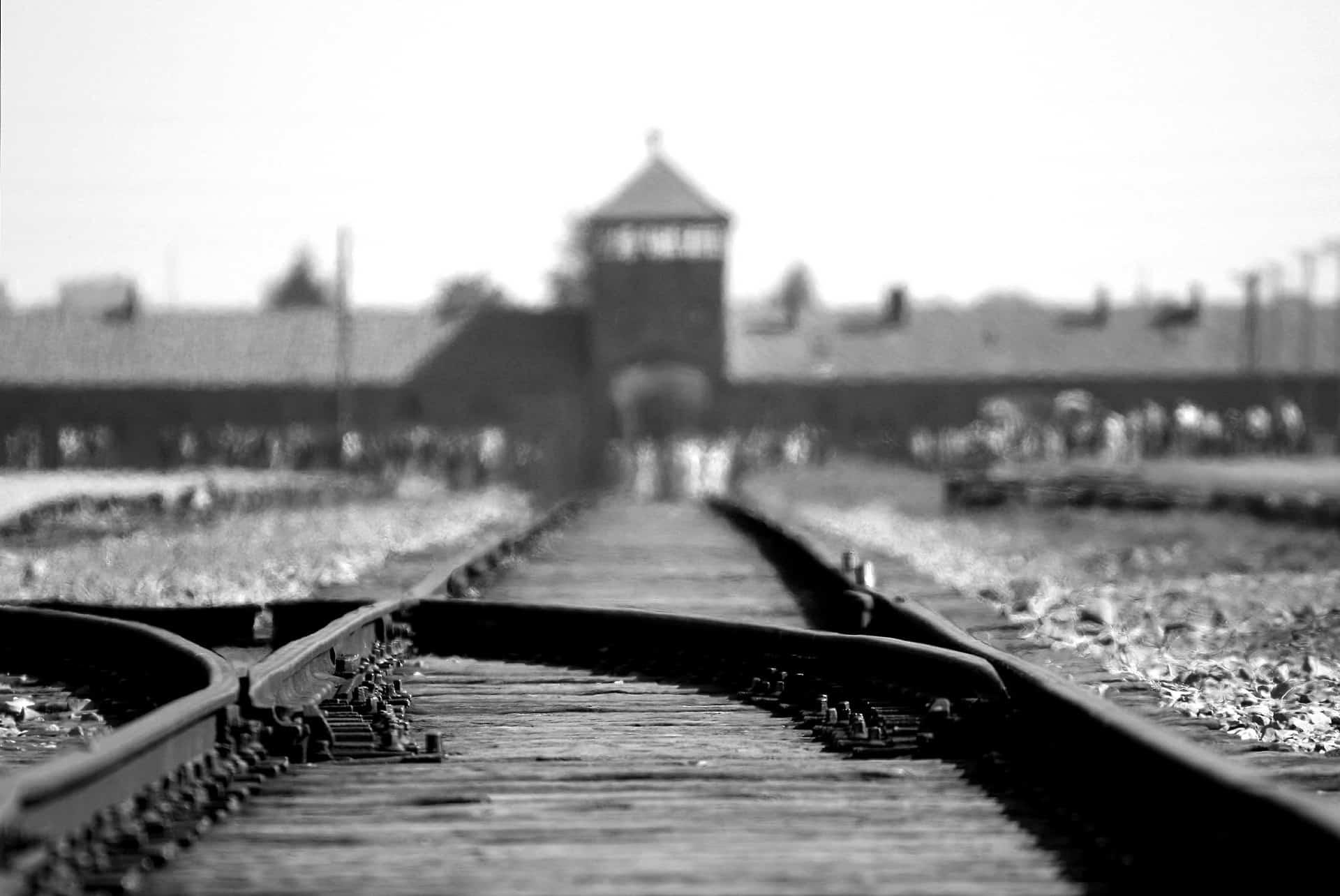Detalles y curiosidades de Auschwitz